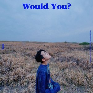 Nothing without you / DAVII Album Cover