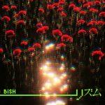 Rhythm / BiSH
